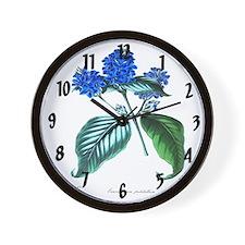 Eranthemum pulchellum Clock Wall Clock