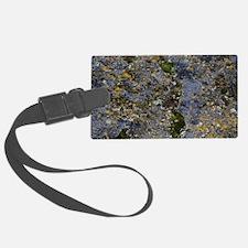 Obsidian and Lichen Luggage Tag
