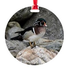 Wood Duck Ornament