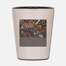 Lichen and Rock Shot Glass