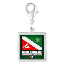Dive Brazil Charms