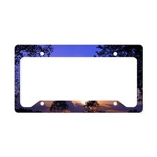 Cute Weather License Plate Holder