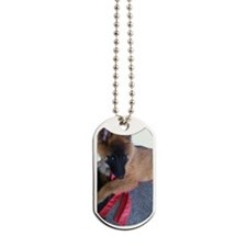 Itaak Dog Tags
