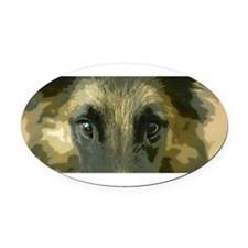 Cute Belgian tervueren Oval Car Magnet