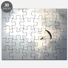 Skydiver4 Puzzle
