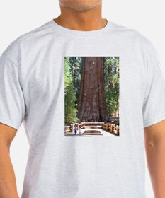 General Sherman Sequoia with Girls T-Shirt