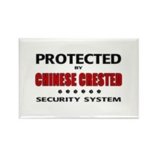 Chinese Crested Security Rectangle Magnet