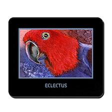 Eclectus Parrot Mousepad