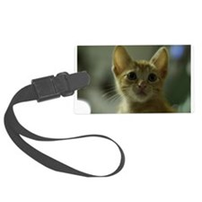 Staring Cat Luggage Tag