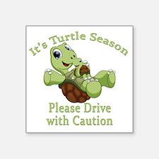 """Turtle Season Square Sticker 3"""" x 3"""""""