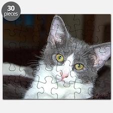 Cute Grey Puzzle
