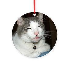 Cute Cat black white Round Ornament