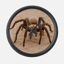 Tarantula Spider Large Wall Clock