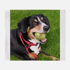 entlebucher mountain dog w ball Throw Blanket