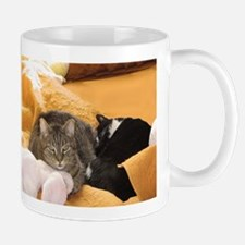 Cat Companions Mugs