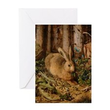 Hare In The Forest Greeting Cards