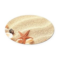 Seashells Oval Car Magnet