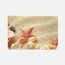 Seashells Magnets