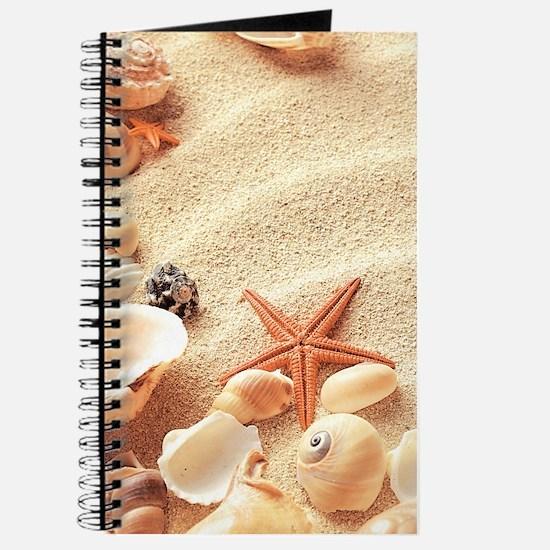 Seashells Journal