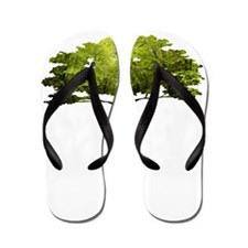 Mandolin Tree Flip Flops