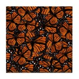 Monarch butterfly Drink Coasters