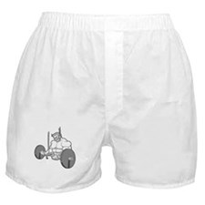 Get Big or Die Trying Shirt Boxer Shorts