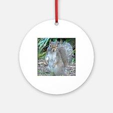 squirrel up Round Ornament
