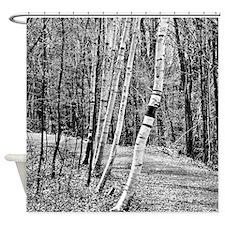 Birch Sentinels Shower Curtain