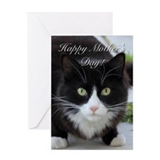 Happy Mothers Day cat Greeting Cards