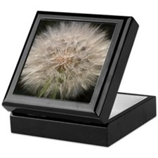 Gone to Seed Keepsake Box