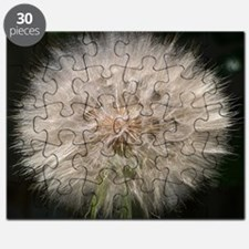 Gone to Seed Puzzle