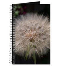 Gone to Seed Journal