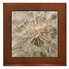 Weed Seeds Framed Tile