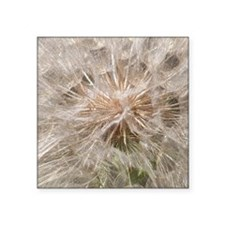 """Weed Seeds Square Sticker 3"""" x 3"""""""