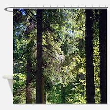 Pine Forest Trail Bavaria Shower Curtain