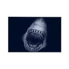 Shark Bite Magnets