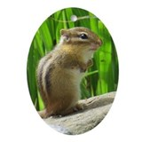 Chipmunk Oval Ornaments