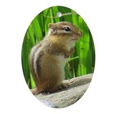 Chipmunk Ornament (Oval)
