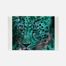 Jaguar 017 Magnets