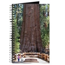 Sequoia with Girls Journal