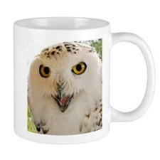 Snowy Owl Close-Up Mugs