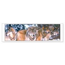 4 Wolves Bumper Car Sticker
