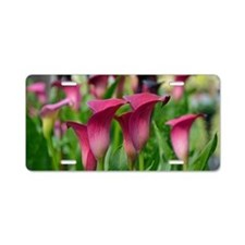 Pink calla lily flowers Aluminum License Plate