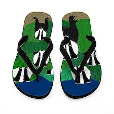 Badger Flip Flops