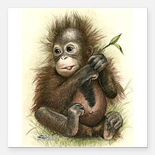 "Orangutan Baby With Square Car Magnet 3"" X 3&"