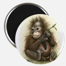 Orangutan Baby With Leaves Magnets