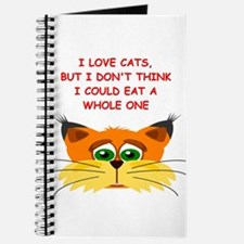 CATS4 Journal
