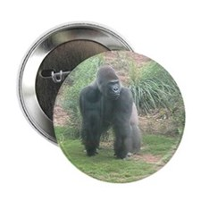"Gorilla 2.25"" Button"