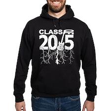 Class Of 2015 Rocks Hoodie