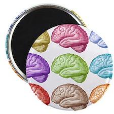 Unique Neuroscience Magnet